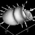 Thin plate spline warp of 3 standard deviations along the 1st principal component